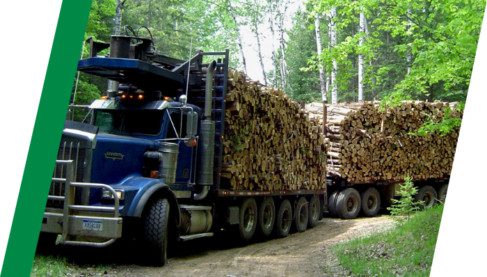 Fully loaded logging truck driving with no issues due to TIREBOSS
